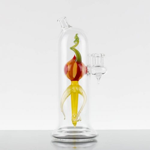 Dan Getz Seedling Specimen #3 Yellow-Orng-Red-Grn 869840-275-1
